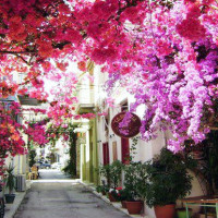 CHALLENGING LAND TOUR: ALL GREECE – 21 DAYS